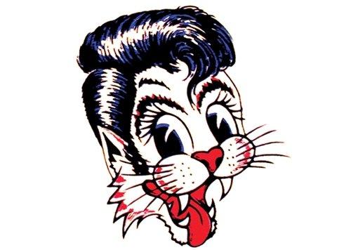The Stary Cats: Runaway Boy